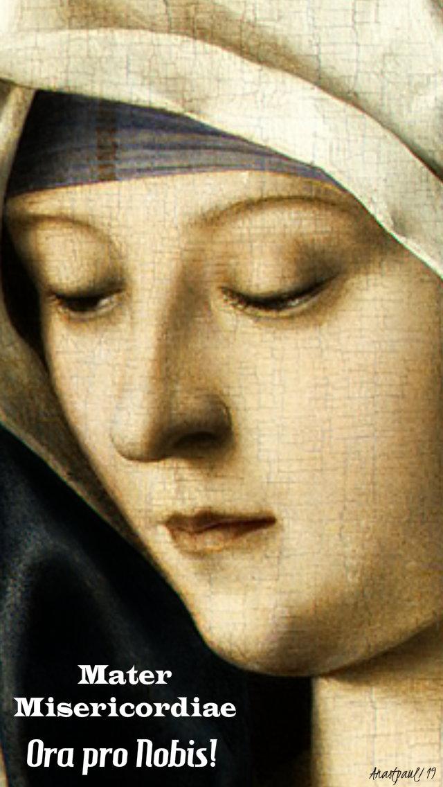 mater misericordiae mother of merct pray for us 8 april 2019.jpg