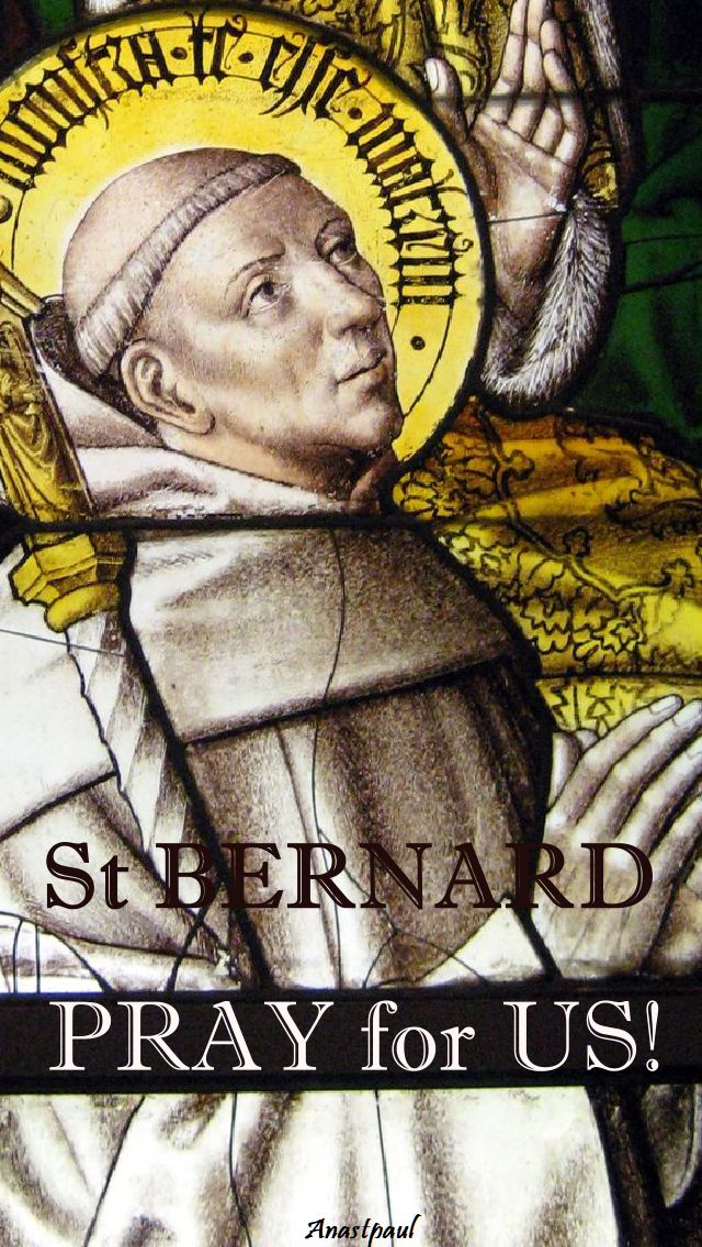 st-bernard-pray-for-us-20 aug 2017