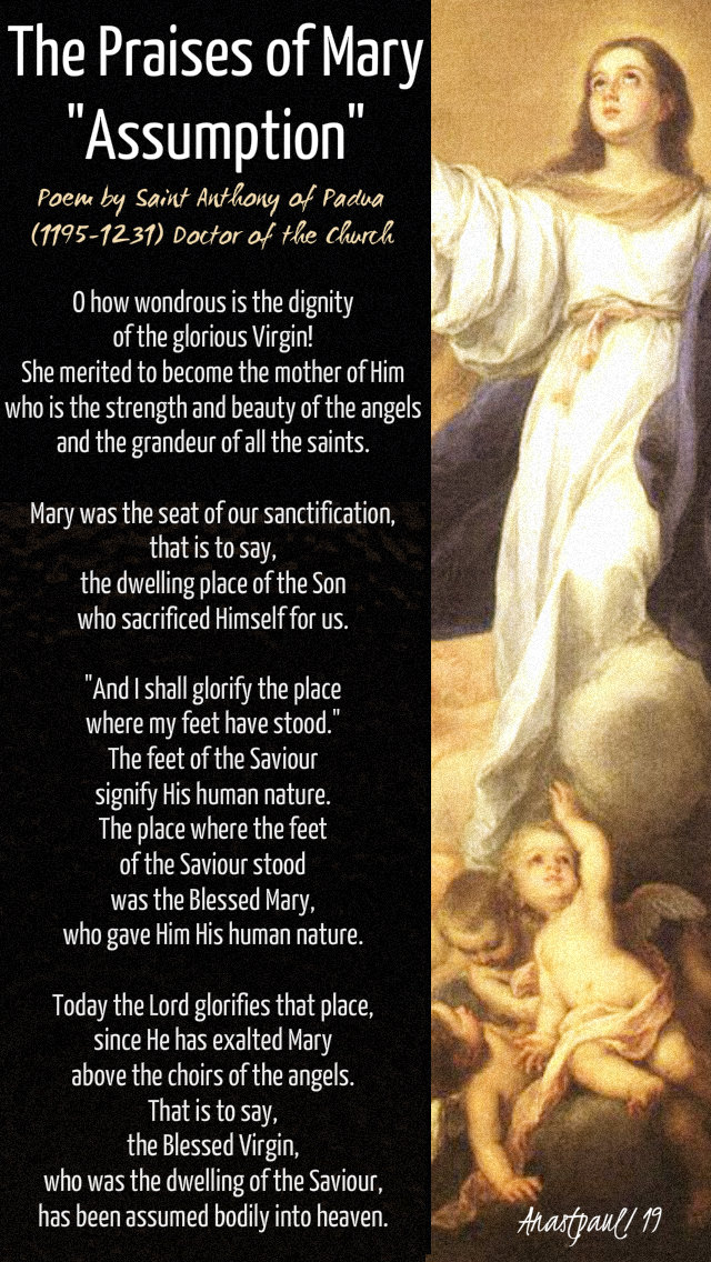 the praises of mary assumption by st anthony of padua 17 aug 2019.jpg
