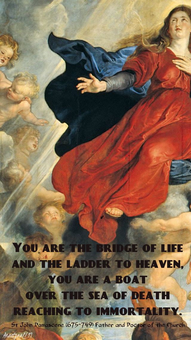 you are the bridge of life and the ladder to heaven 15 aug 2019 assumption.jpg