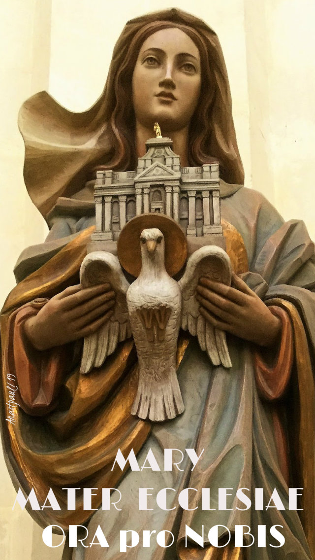 mary mater ecclesiae pray for 10 july 2019