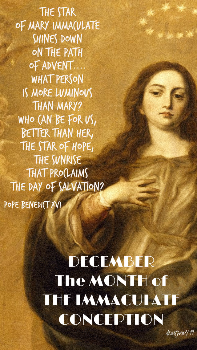 the star of mary immaculate shines down on the path of advent - pope benedict - dec month of the imm conception 1 dec 2019.jpg