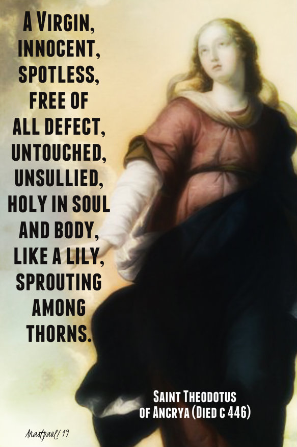 a virgin innocent and spotless - 9 dec 2019 imm conception st theodotus .jpg