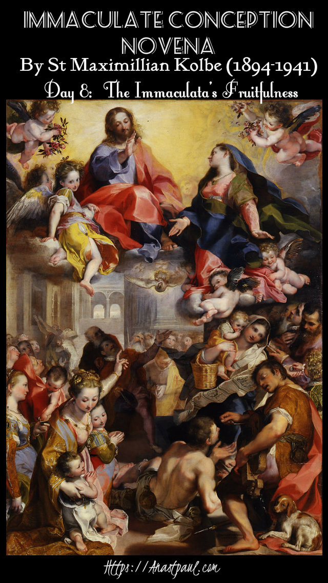 day 8 - the immaculate conception novena 8 dec 2019.jpg