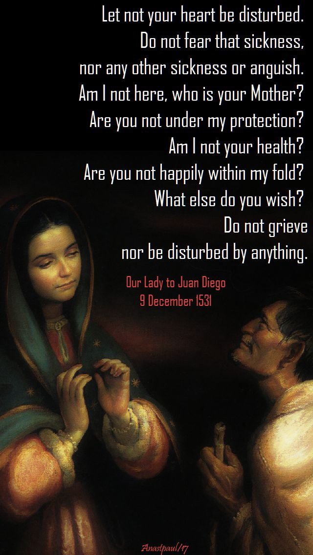 let-not-your-heart-be-disturbed-our-lady-guadalupe-9-dec-2017.jpg