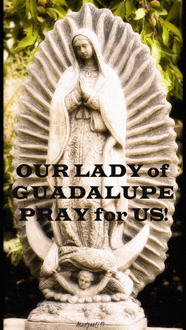 our lady of guadalupe pray for us 12 dec 2019.jpg