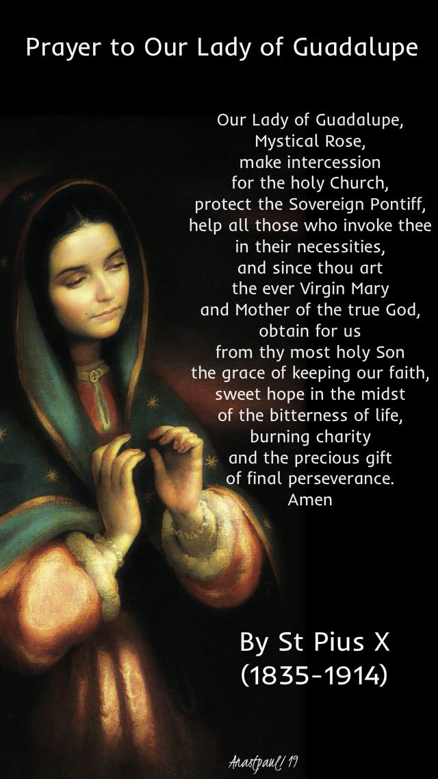 prayer to our lady of guadalupe by st pope pius X 12 Dec 2019.jpg