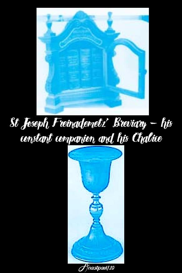 st joseph's chalice and breviary 28 jan 2020 st joseph freinademetz