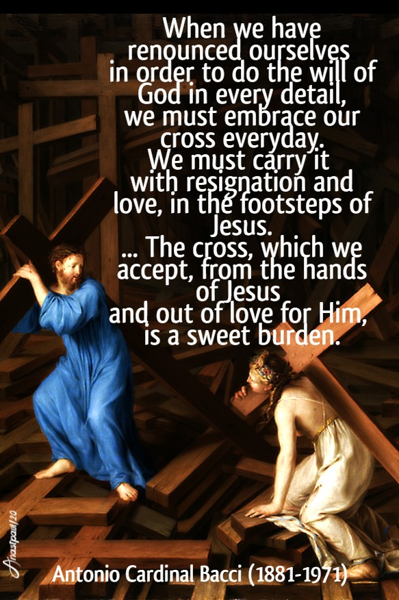 the cross which we accept from the hands of jesus - bacci - 23 jan 2020