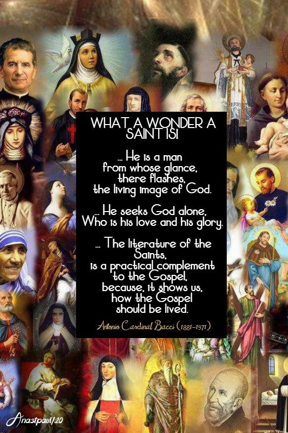 what a wonder a saint is - bacci 18 jan 2020