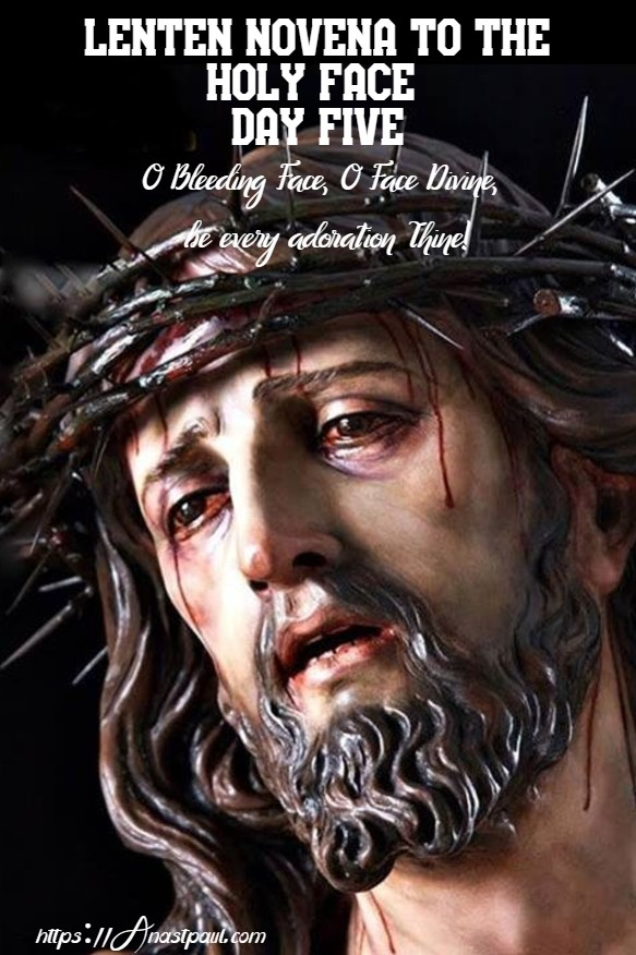 DAY FIVE NOVENA TO THE HOLY FACE 21 FEB 2020