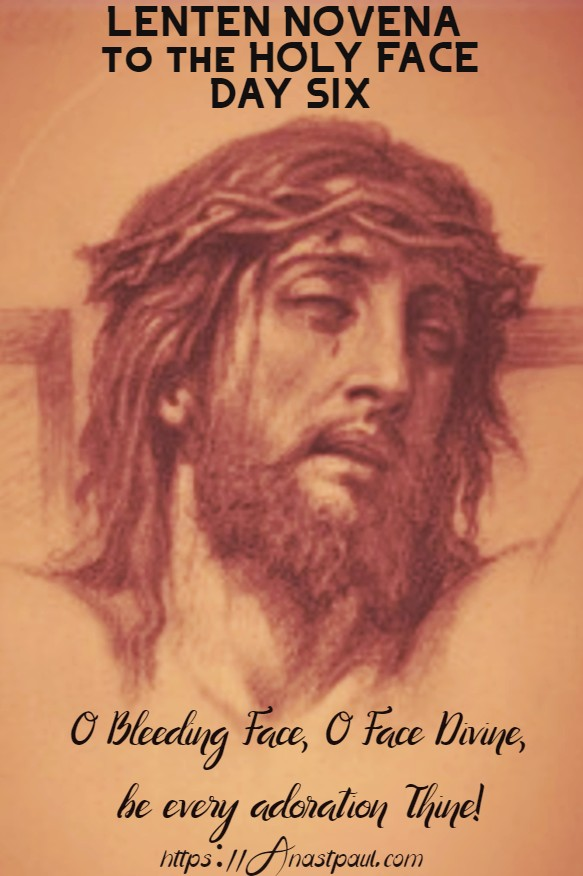 lenten novena to the holy face day six 22 feb 2020