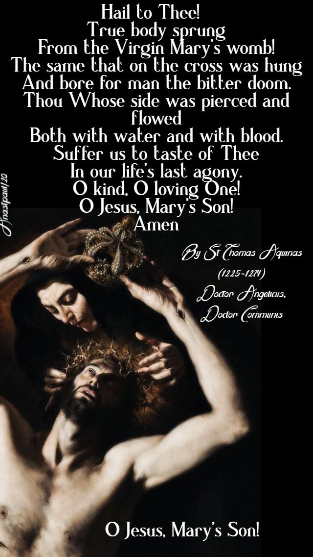 o jesus mary's son st thomas aquinas 28 march 2020