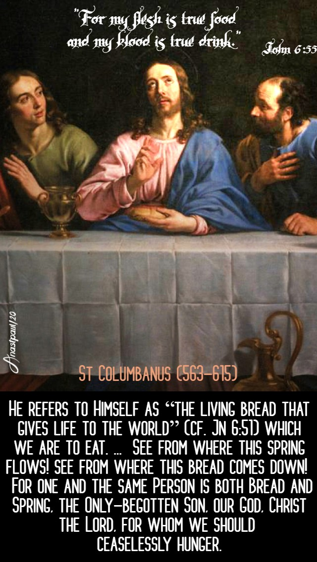 john 6 55 - fopr my flesh is true food - he refers to himself - st colombanus 1 may 2020