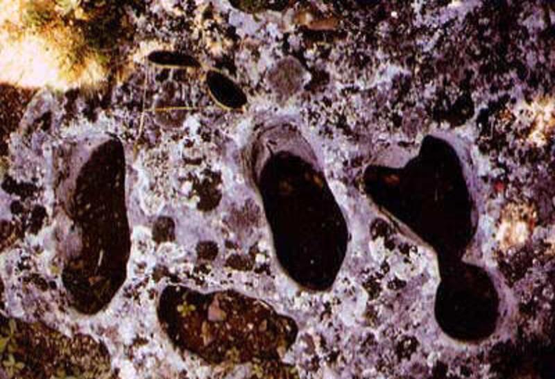 footprints of the devil bl benincasa