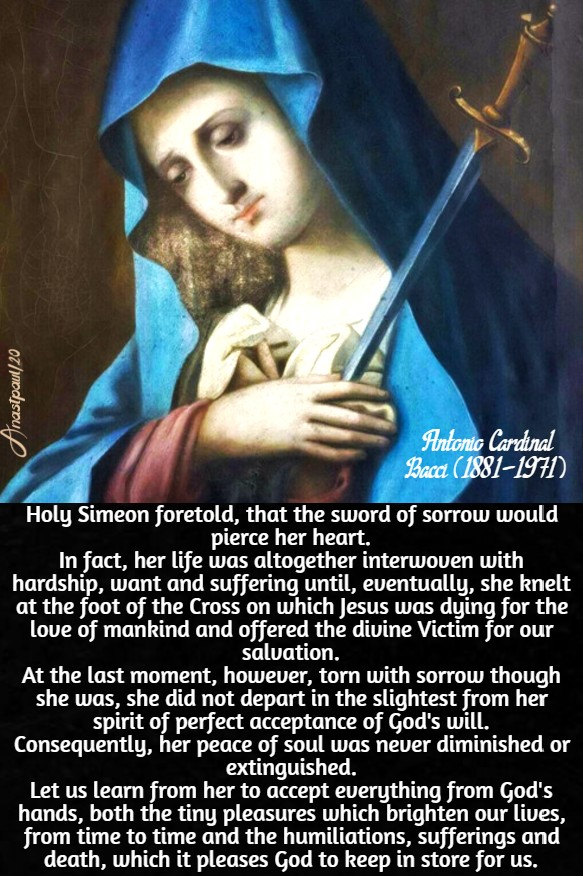 Holy simeon foretold - mary, the source of peace - bacci -18 may 2020