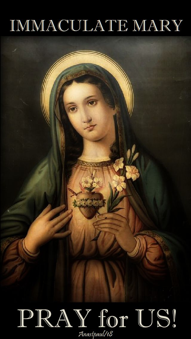 immaculate mary pray for us - 2 sept 2018
