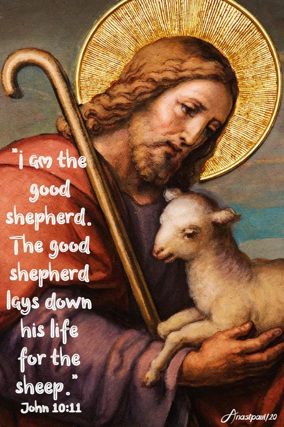 john 10 11 - i am the good shepherd 4 may 2020