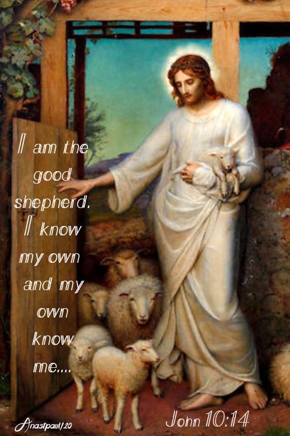 john 10 14 i am the good shepherd i know my own 4 mary 2020