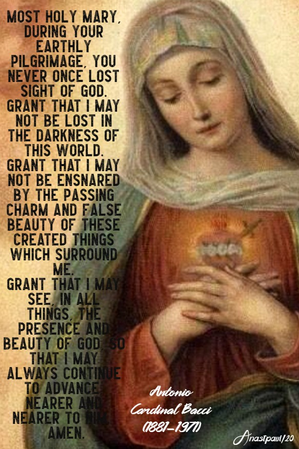 mary the light in the darkness - marian prayer - bacci 19 may 2020