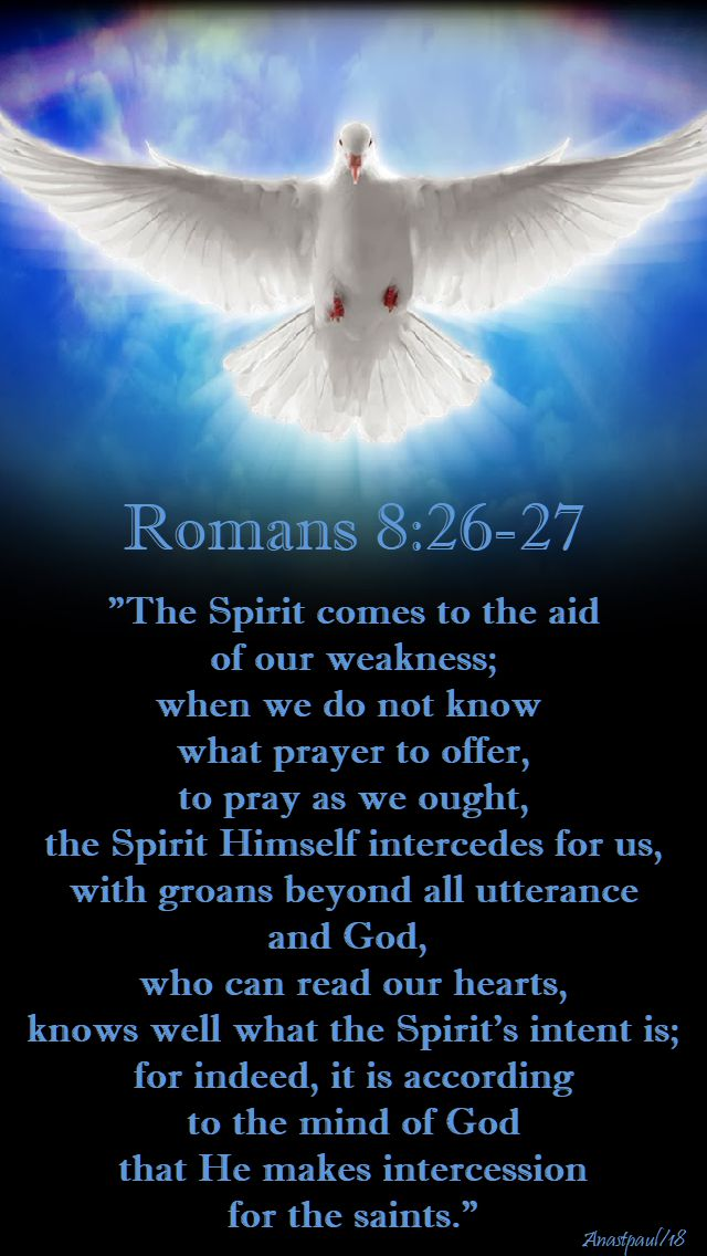 romans 8 26 - 27 - the spirit comes to the aid of our weakness - 16 may 2018