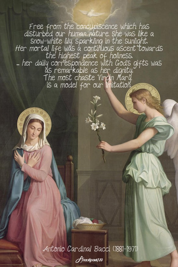 the virginal purity of mary bacci 6 may 2020