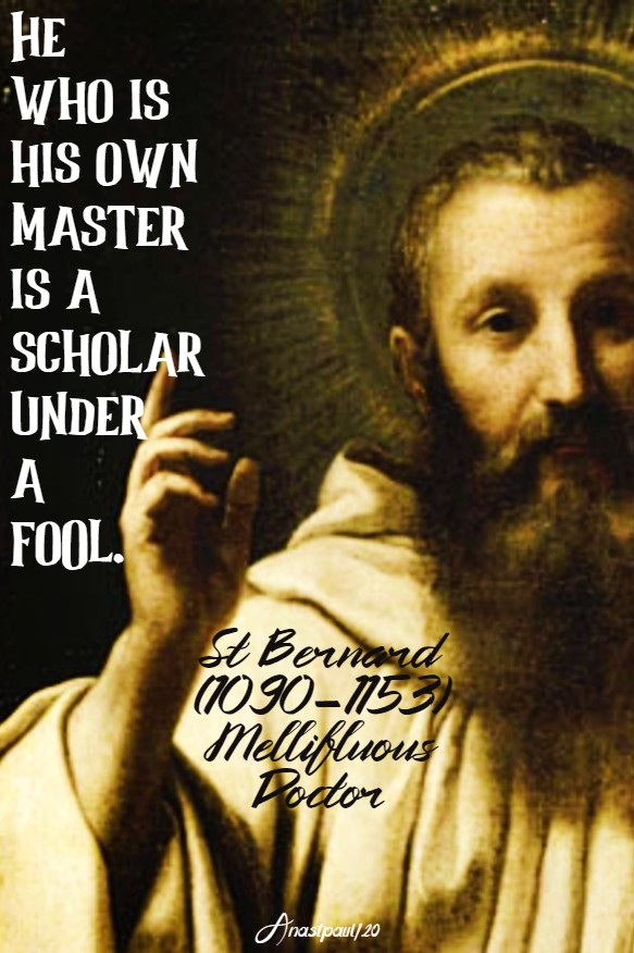 he who is his ow master is a scholar under a fool - st bernard 25 june 2020