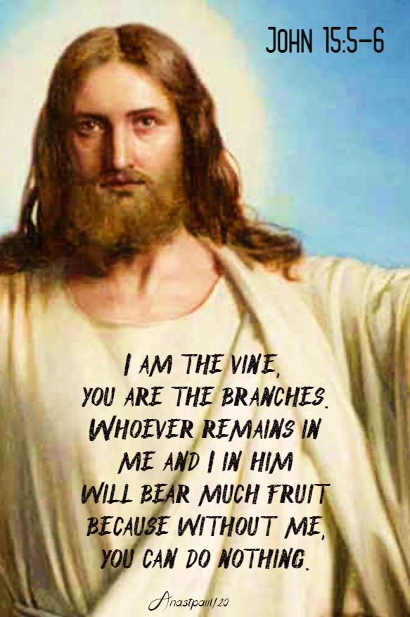 john 15 5-6 i am the vine - 23 june 2020