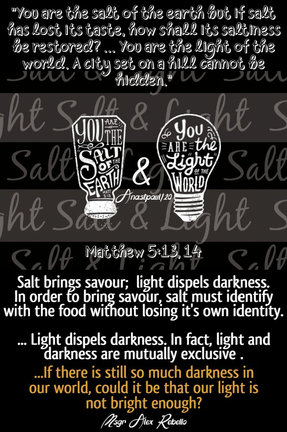 matthew 5 13 and 14 salt and light msgr alex rebellow bible diary 9 june 2020