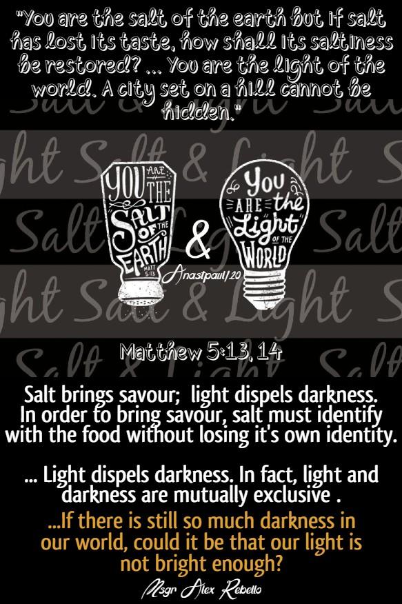 matthew 5 13 and 14 salt and light msgr alex rebellow bible diary 9 june 2020