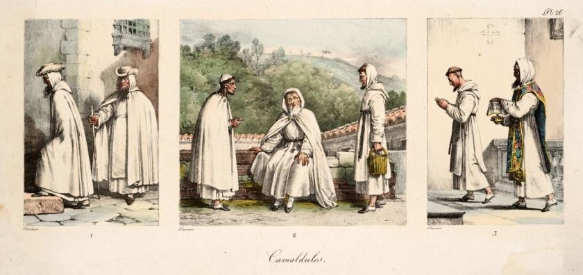 OCam-Thomas-Camaldules CAMOLDULES