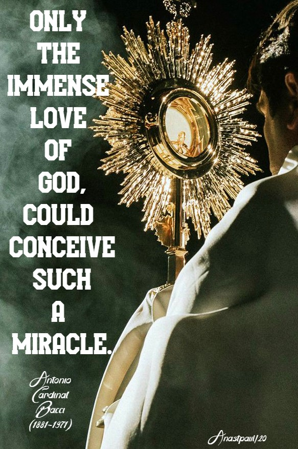 only the immense love of god could conceive such a miracle - bacci 14 june 2020
