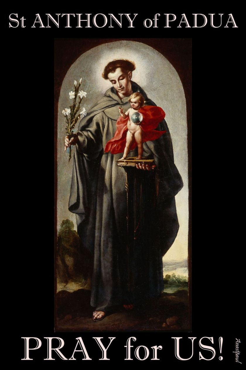 ST ANTHONY OF PADUA PRAY FOR US 3