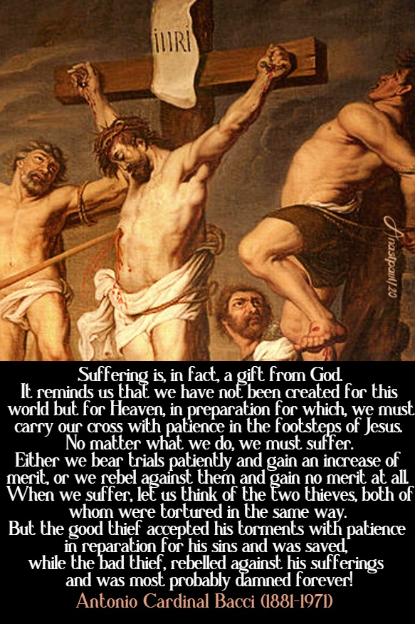 suffering is in fact a gift from god - bacci - 16 june 2020