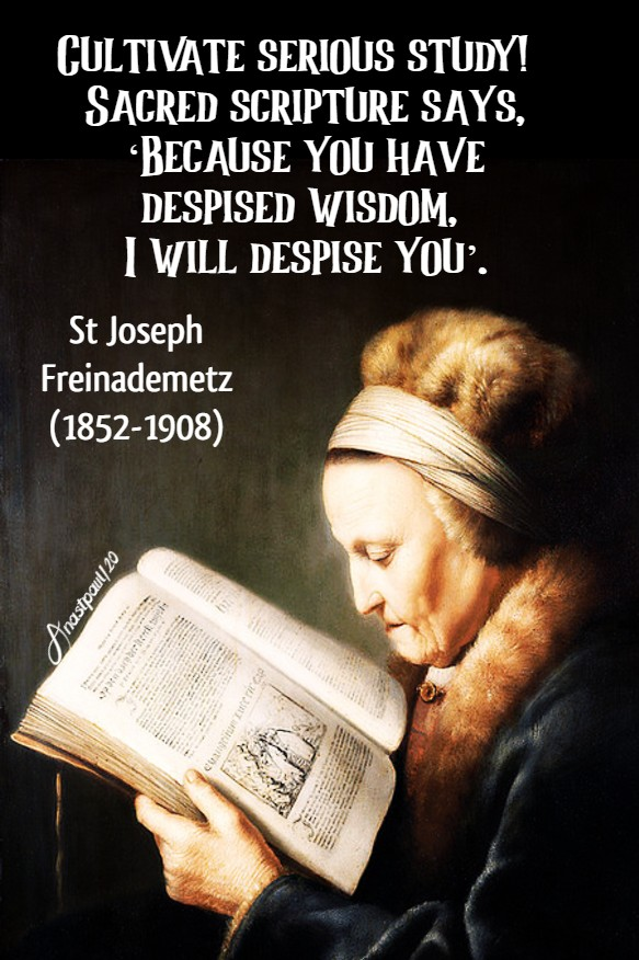 cultivate serious study! St Joseph freinademetz 12 july 2020