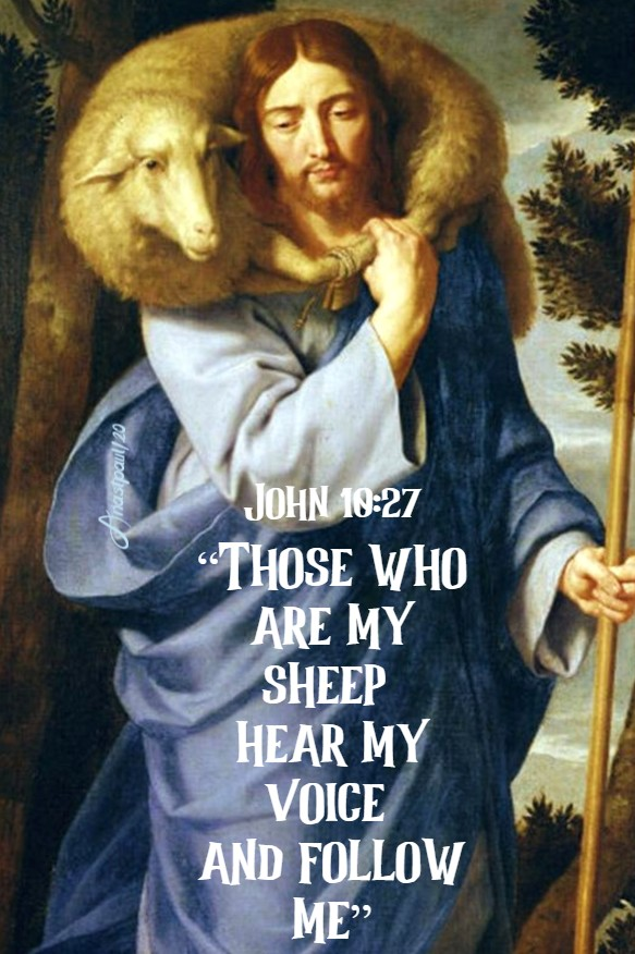 john 10 27 those who are my sheep hear my voice and follow me 12 july 2020