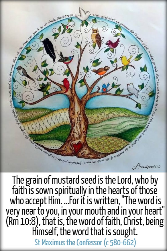 mark 4 30-31 the grain of mustard seed is the lord - st maximus 31 jan 2020 to what shall I compare