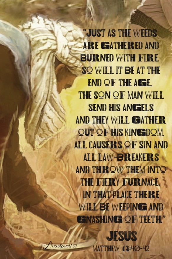 matthew 13 40-42 just as the weeds are gathered and burned with fire - 19 july 2020