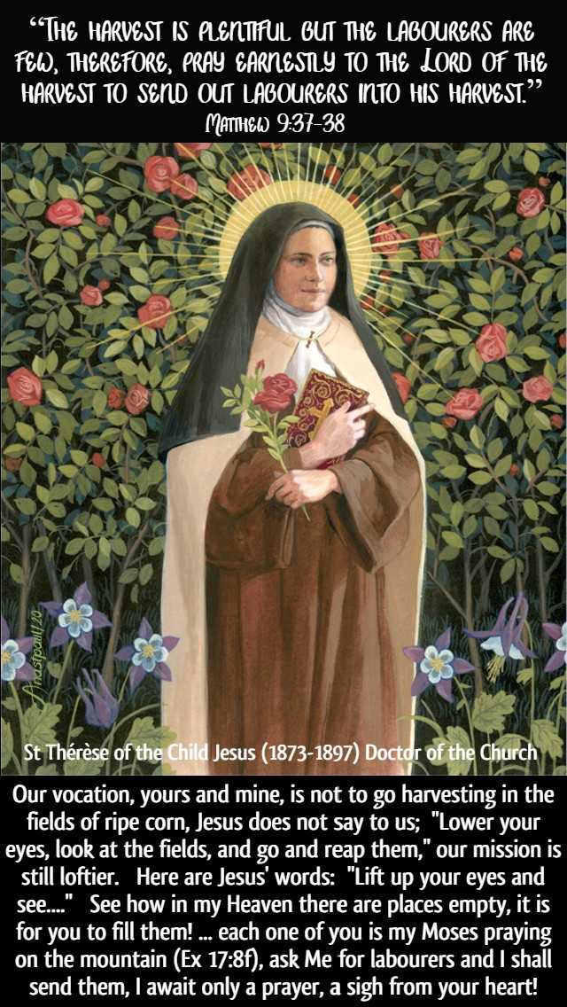 matthew 8 37-38 the harvest is plentiful - our vocation yours and mine is not to harvesting - st therese of lisieux 7 july 2020