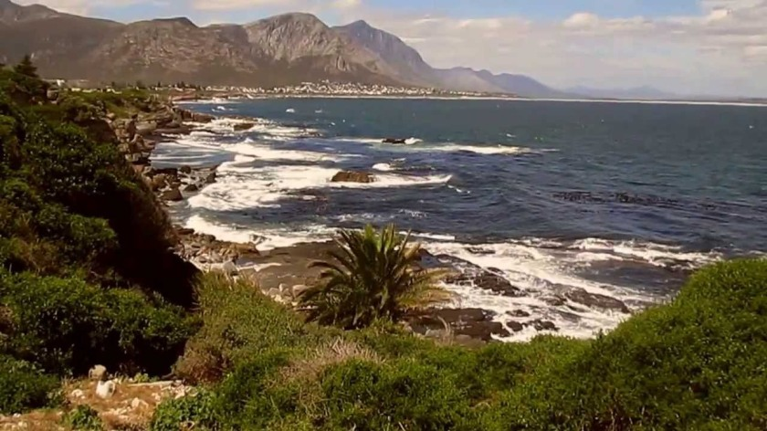 maxresdefault hermanus cape whale coast