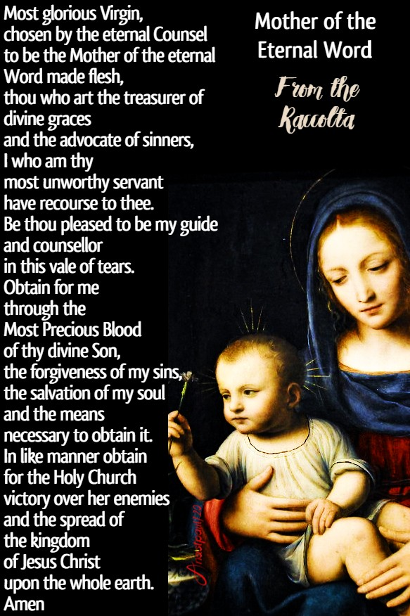 mother of the eternal word from the raccolta 4 july 2020