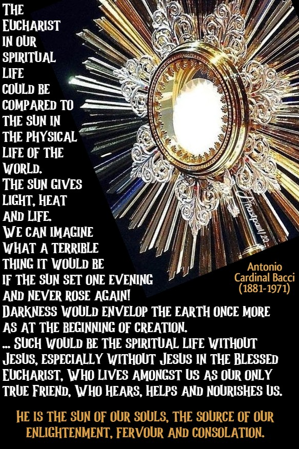 the eucharistic life - the eucharist in our spiritual life - bacci 5 july 2020