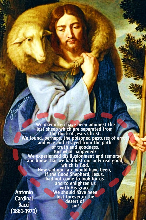 the good shepherd - we may often have been - bacci 3 july 2020