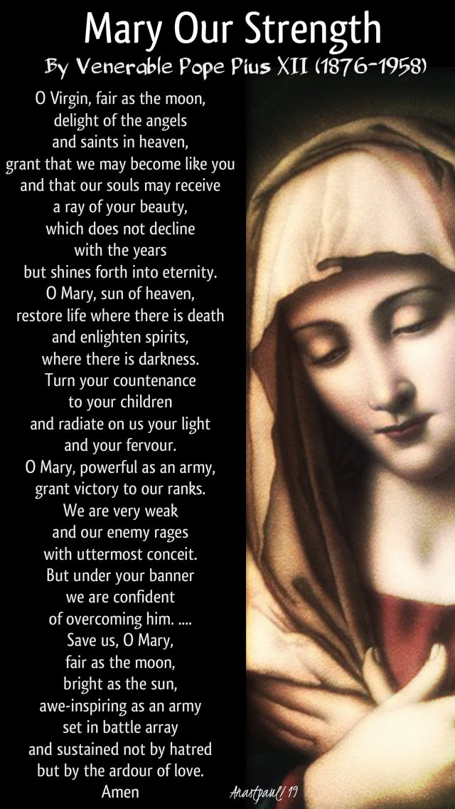 mary our strength by pope pius XII - 3 august 2019